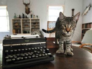 Archibald Leach protege a máquina de escrever de Hemingway