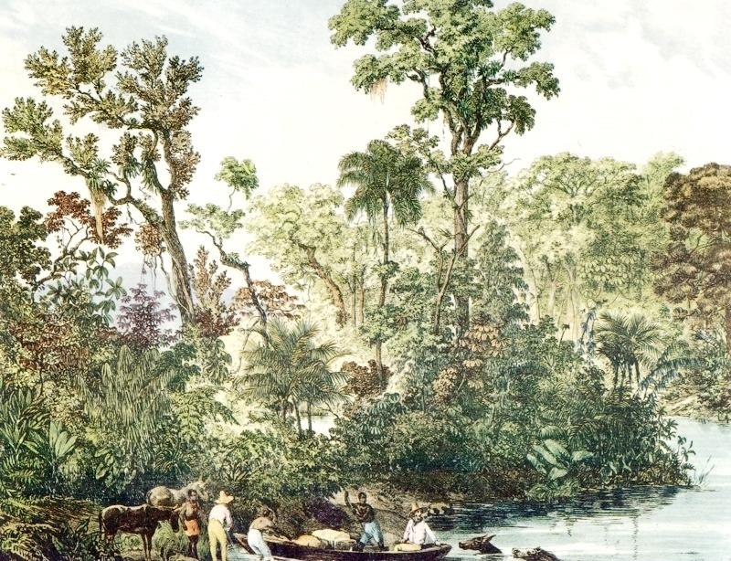 rio panahyba